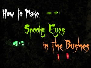 How-to-Make-Spooky-Eyes-in-the-Bushes-for-Halloween-1024x768