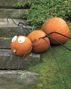 No-Carve-Pumpkin-Ideas-spider